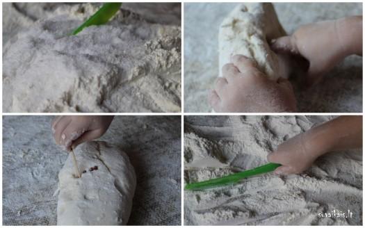 druskos tesla-rašymas1